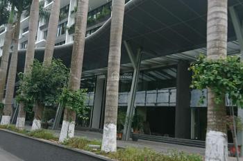 Cho thuê mặt bằng kinh doanh 100m2 x 3 tầng MT 7,5m MP Nguyễn Hoàng Nam Từ Liêm, HN, 25 triệu/tháng