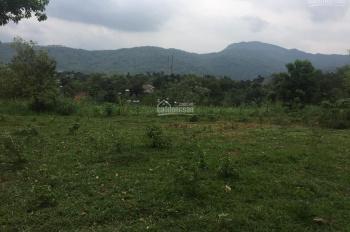 Chuyển nhượng gấp 5000m2 đất trang trại nghỉ dưỡng tại thôn Muồng Voi, xã Vân Hòa, Ba Vì, giá 230tr