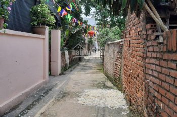 Chính chủ cần tiền bán 75.8m2 đất thôn Hội, Gia Lâm, Hà Nội