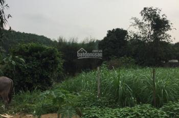Bán đất nghỉ dưỡng Yên Bài, Ba Vì hai mặt tiền