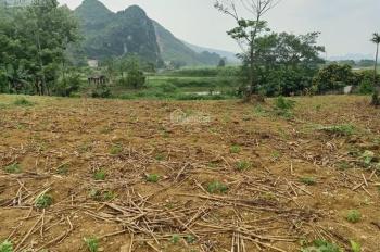 Cần chuyển nhượng lô đất 1800m2 đất làm biệt thự nhà vườn nghỉ dưỡng, views hồ Cư Yên, Lương Sơn