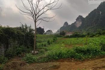 Cần bán lô đất 8000m2 đất làm nhà vườn nghỉ dưỡng, giá đầu tư tại Liên Sơn, Lương Sơn, Hòa Bình
