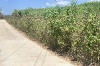 Cần bán nhanh lô đất đẹp 11.700m2 tại Khánh Vĩnh chỉ với giá 470 triệu. Lh: 0982497979 ms Vy