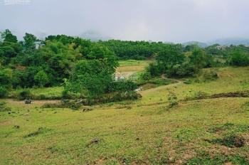 Bán 2500m2 đất tại Tiến Xuân, Thạch Thất, Hà Nội, gần Xanh Villas