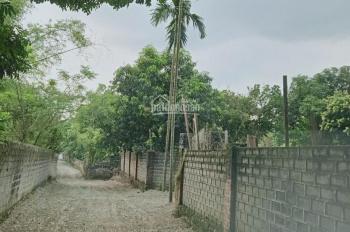 Cần bán 1804m2 khuôn viên hoàn thiện có nhà cấp 4 giá rẻ tại Lương Sơn Hòa Bình