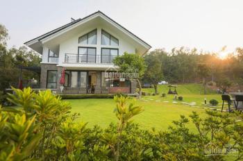 Bán homestay 14 phòng hẻm Trần Hưng Đạo, doanh thu 1 tỷ/năm, giá chỉ 14 tỷ