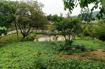 Cần bán 2400m2 đất nhà vườn LH 0987651818