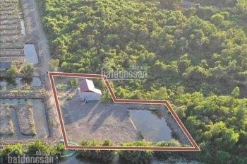 Bán đất view sông Phú Đông, DT 1400m2, tặng nhà vườn đường xe hơi tới nơi, LH: 0987124098