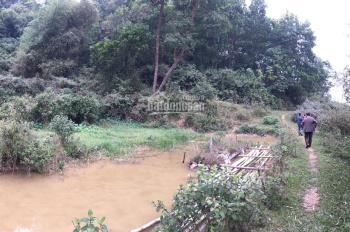 Trang trại 1ha giá 2,2 tỷ sát thị trấn Lương Sơn, Hòa Bình cách HN 40km hướng QL6 có ao view đồng