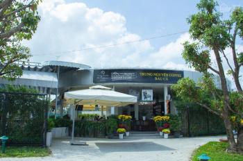 Chính chủ bán gấp đất nền KDC Bàu Cả Phát Đạt trung tâm TP Quảng Ngãi. LH: Ms Quỳnh Nga 0767606076