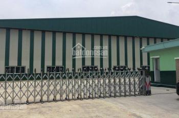 Cho thuê kho xưởng chuyên nghiệp tại Đà Nẵng diện tích từ 500 - 10000m2