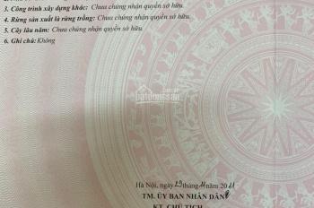 0983180162 gia định cần bán mảnh đất tại thôn Phú Thịnh - Sóc Sơn- hn