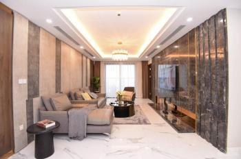 Ưu đãi cực lớn căn hộ cao cấp Sunshine Center giá chỉ từ 36tr/m2. Tặng 500 triệu, chiết khấu 12%