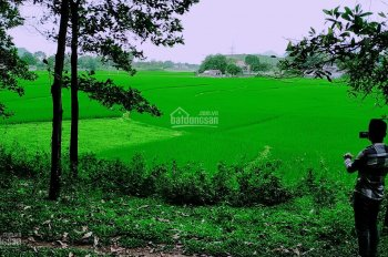Bán 3600m2 đất làm nghỉ dưỡng view cánh đồng giá rẻ tại Hòa Sơn, Lương Sơn