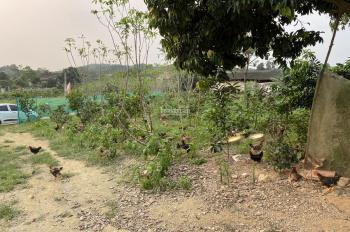 Bán lô đất 2800m2 có 205m2 đất ở mặt đường liên thôn Cẩm Lĩnh, Ba Vì, Hà Nội