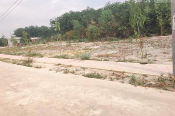 Mua đất được xe đất khu phố 2 thị trấn Chơn Thành. Diện tích 175m2