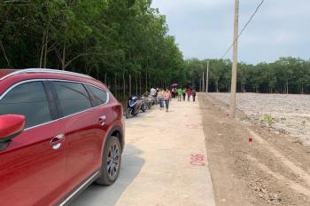 Đầu tư đất tại TT Chơn Thành chỉ TT 350tr đường Ngô Đức Kế, SHR. Trả góp 100 nghìn/ngày