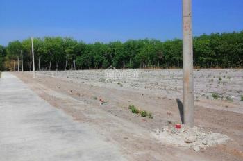 Thị trấn chơn thành đất ngay trung tâm  Mua đất tặng xe sirius cho khách hàng mỗi nền một chiếc xe