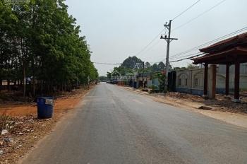 Bán đất Bàu Bàng để thu hồi vốn mùa dịch