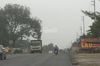 Bán gấp mặt đường QL21A - Phú Cát - Quốc Oai Hà Nội - Mặt tiền 15m - 2 mặt thoáng trước sau