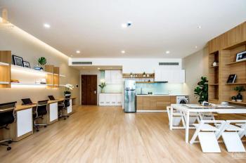 Cho thuê căn hộ văn phòng (Officetel) và sàn thương mại mặt tiền Nguyễn Lương Bằng - Phú Mỹ Hưng