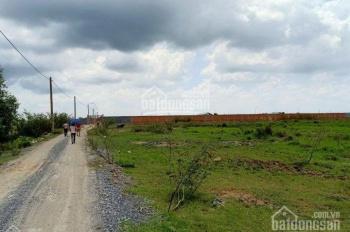 Bán 1.9 hecta view sông Đồng Nai, phường Trường Thạnh, Quận 9, giá bán nhanh