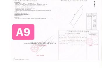 Cần bán gấp lô đất mặt tiền 328 ở biển Hồ Tràm - BRVT, sẵn sổ đỏ, thổ cư, giá cực tốt chỉ 3,6tr/m2
