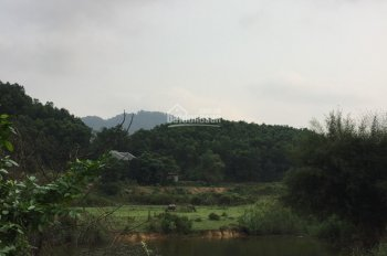 Bán đất sổ đỏ tại xã Yên Bài - Ba Vì. Mặt hồ lớn, giá 1.2tr/m2