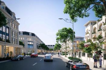 Tôi đang có 4 suất ngoại giao mặt đường 22,5m giá rẻ dự án Louis Hoàng Mai. LH 0931774286