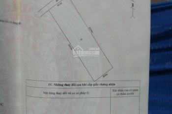Bán đất vườn xã Thạnh Lợi, Bến Lức, Long An xe du lịch tới đất
