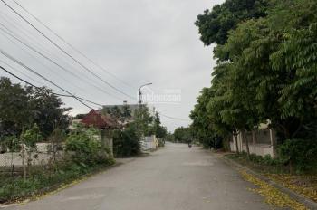 Bán đất mặt đường thôn Nhất Trí - Đặng Cương. LH: 0973.569.591