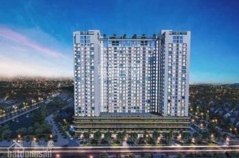 Căn hộ xanh cao cấp, đầu tiên tại thành phố Quy Nhơn