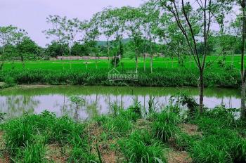 Cần bán 2400m2 đất làm nhà vườn xã Yên Bài, Ba Vì, giá 1,8 tỷ. ĐT 0971274648