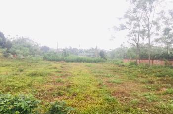 Chuyển nhượng gấp 1891m2 đất thôn Muỗi, Yên Bài, Ba Vì, Hà Nội