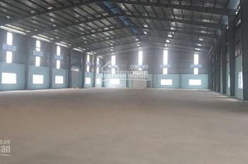 Cho thuê kho lớn 6.000m2 mặt tiền đường Tân Bửu, H. Bến Lức, giá rẻ bất ngờ 50 nghìn/m2/th