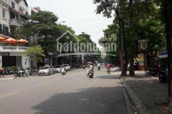 Cần bán gấp nhà mặt phố Nguyễn Văn Tuyết 53 Yên Lãng Trung Liệt, Đống Đa, DT 165m2, giá 62 tỷ KD