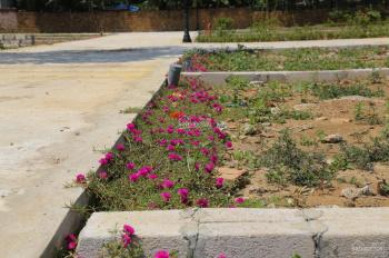 Đầu tư đất nền Hòa Lạc - Chỉ từ 600 triệu - sổ đỏ sang tên luôn - gần đường lớn - LH 0987555386