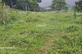 Cần tiền bán gấp 5400m2 đất sát suối, cánh đồng, cạnh resort giá tốt