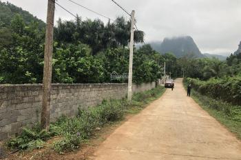 Bán gấp 7200m2 đất trang trại nhà vườn lại Lương Sơn, giá 400 nghìn/m2
