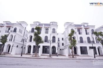 Bán biệt thự song lập Hải Âu được kinh doanh tại dự án Vinhomes Ocean Park