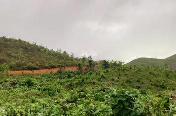 Bán đất đồi trọc ở gần Bắc Kạn. Diện tích 5ha giá 100tr/ha sổ đỏ sang tên ngay. LH 0764583637 Quang