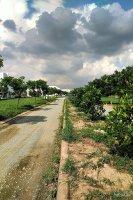 Cần tiền bán gấp lô đất 85m2 KĐT Làng Sen Việt Nam, khu B1 Hương Sen