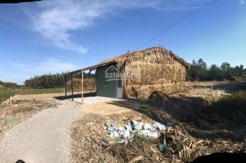 1800m2 đất TCLN hẻm 869 Nguyễn Văn Tạo, sổ riêng, đã san lấp, gần ngã 4 KCN, giá chỉ 2,7 tỷ