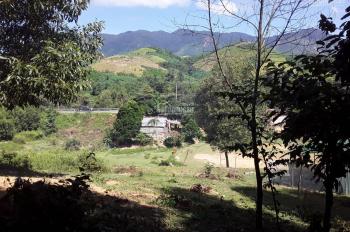 Chính chủ cần bán lô đất trồng cây lâu năm tại thị trấn Khánh Vĩnh, Khánh Hòa