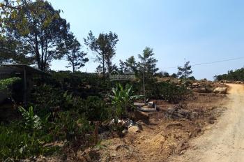 Bán đất nghỉ dưỡng đường Phạm Hồng Thái, Tp Bảo Lộc