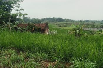 Cần chuyển nhượng lô đất 3000m2 đất làm nhà vườn nghỉ dưỡng giá rẻ tại Hòa Sơn, Lương Sơn, HB