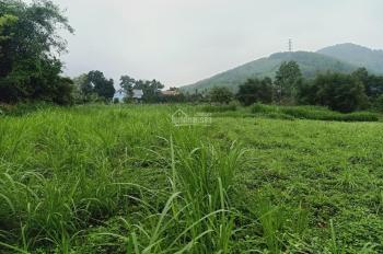 Siêu hấp dẫn lô đất 5000m2 vị trí đắc địa giá hấp dẫn tại Hòa Sơn, Lương Sơn, Hòa Bình