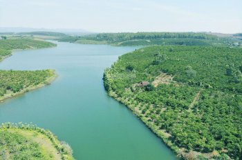 Thanh lý gấp nền biệt thự nghỉ dưỡng view hồ Bảo Lâm, giá rẻ, lên thổ cư vô tư LH 0961967892