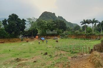 Cần chuyển nhượng lô đất 5000m2 vị trí đắc địa giá đầu tư tại Liên Sơn, Lương Sơn, Hòa Bình