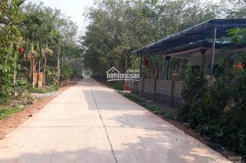 Bán đất chợ Lai Uyên - 556m2, SHR, giá 620tr, cách đường QL13 200m, liền kề KCN Bàu Bàng mở rộng